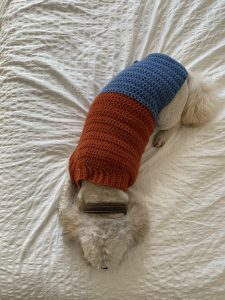 a small dog wearing a crochet jumper sleeping on a bed