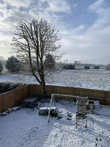 A picture of a garden covered in snow .